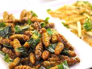 plat d'Insectes comestibles bio