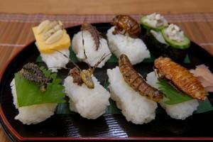 Sushi d'insectes comestibles biologiques