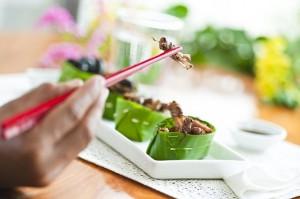 Mangez des insectes!! C'est très bon pour la santé